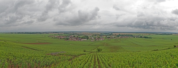 Panorama of the Wine of Vosne-Romanée, Bourgogne